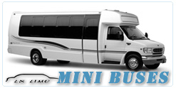 Fort Worth Mini Bus rental