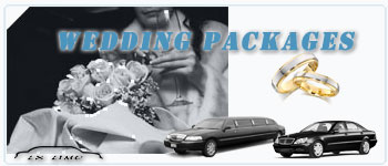 Fort Worth Wedding Limos